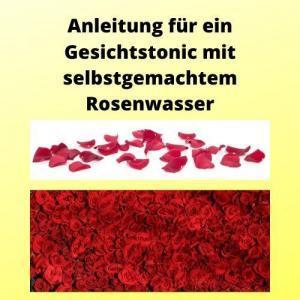Anleitung für ein Gesichtstonic mit selbstgemachtem Rosenwasser