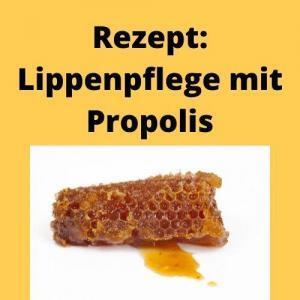Rezept Lippenpflege mit Propolis